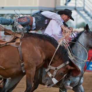 _DSC9245_rodeo_pick-up_man_web